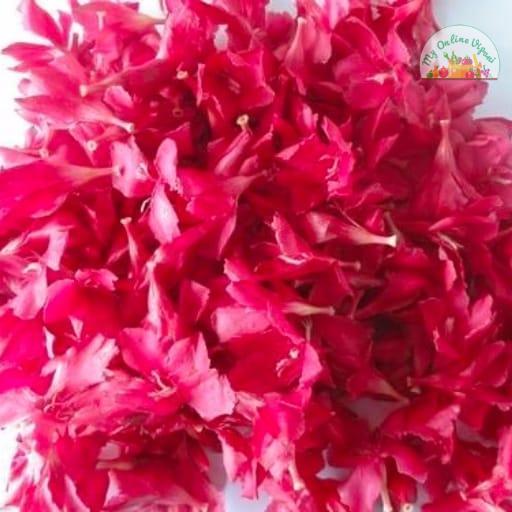 Arali Poovu Oleander Pink Flower