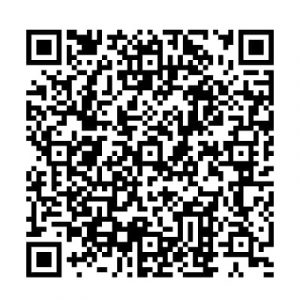 My Online Vipani Google Pay QR Code