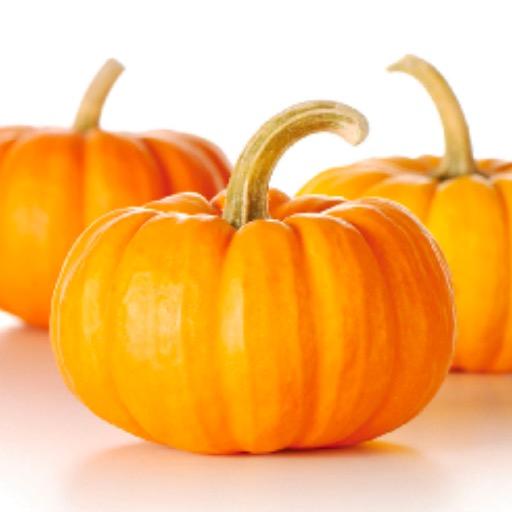 Whole Pumpkin Each