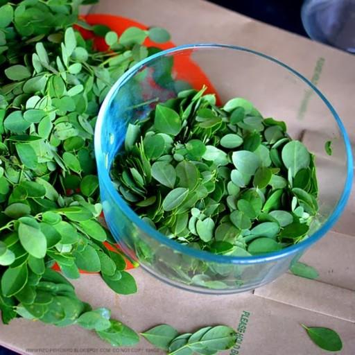 Stripped Drumstick Leaf Muringayila