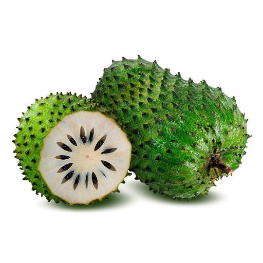 Organic Soursop Fruit Each Mullatha