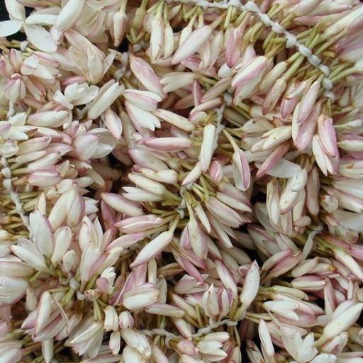 Jasmin Flower Garland